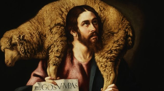 Alle mie pecore io do la vita eterna