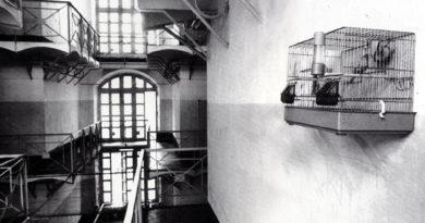 Il carcere e la speranza: un percorso di vita nuovaIl carcere e la speranza: un percorso di vita nuova